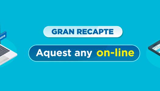 GRAN RECAPTE D'ALIMENTS - DEL 16 AL 21 DE NOVEMBRE DE 2020