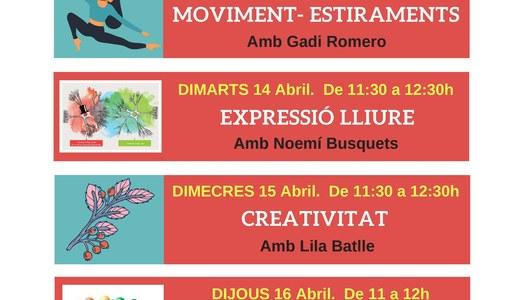 Programació d'activitats on-line per al mes d'abril de 2020 de l'Associació Salut Mental Pallars
